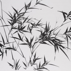 Bamboo (No. 55), 2005 Ink on board 69 x 94 cm